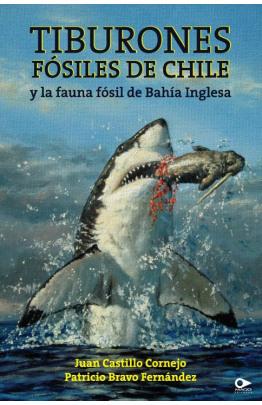 Tiburones fósiles de Chile y la fauna fósil de Bahía Inglesa